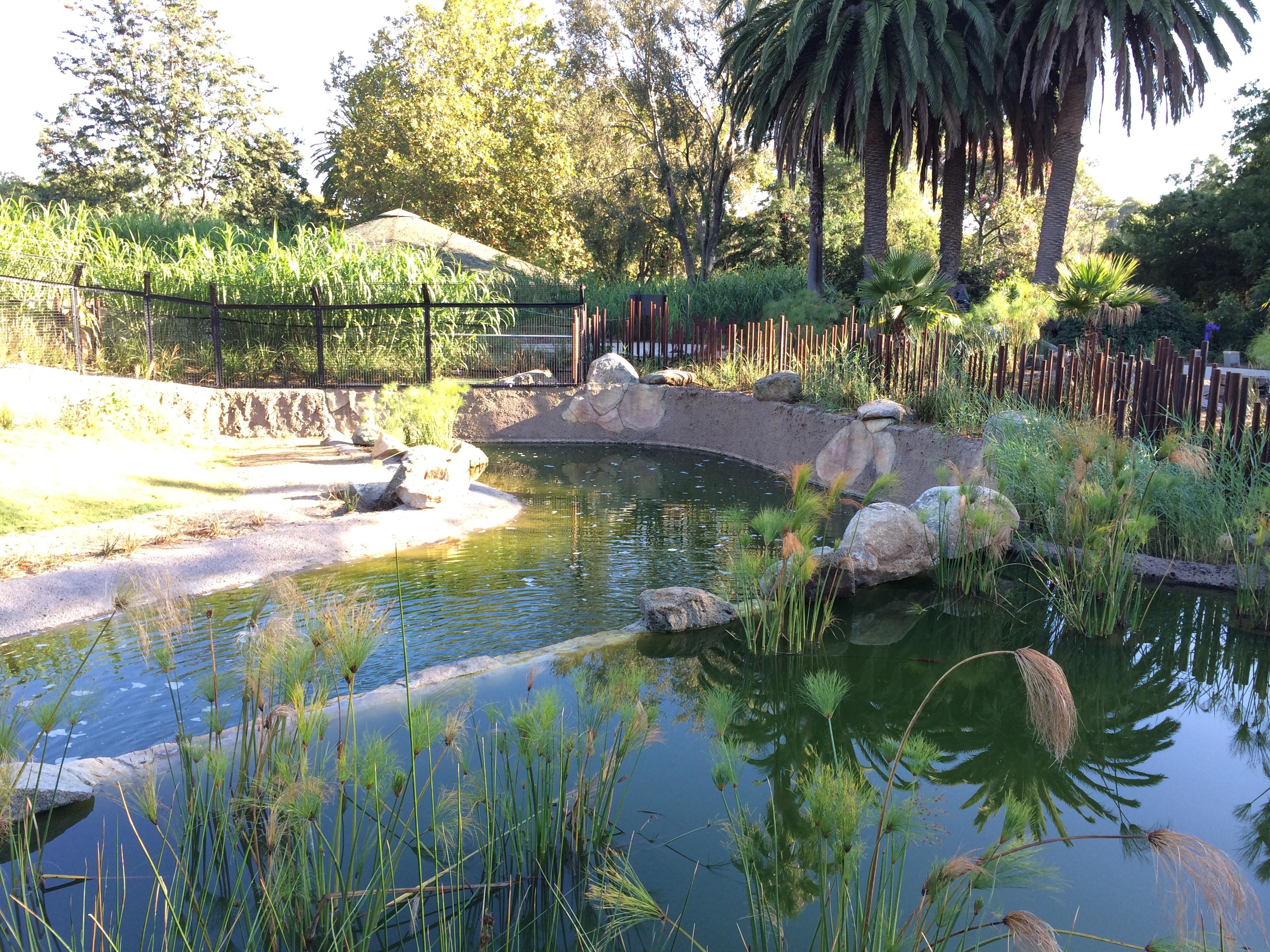 Melbourne Pool Builders Minke Pools